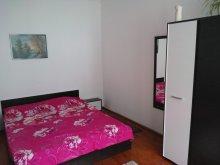 Hostel Bistrița Bârgăului Fabrici, Smile Apartment