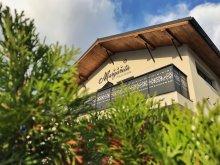 Accommodation Galda de Jos, Margareta Guesthouse