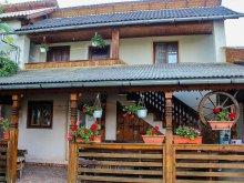 Accommodation Botiza, Ilea Guesthouse