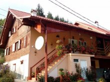 Accommodation Gura Izbitei, Moților Guesthouse