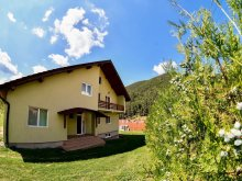 Casă de vacanță Pleșoiu (Livezi), Casa de vacanță Green House