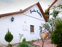 Casă de oaspeți Tiszasas, Casa de oaspeți Karolina