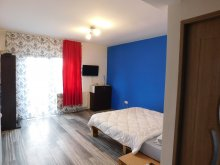Vacation home Cluj county, Dana Place Vacation home