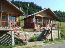 Accommodation Vama Buzăului, Silva Chalet