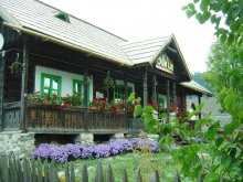 Accommodation Pojorâta, Lia Guesthouse