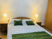 Accommodation Alba Iulia, Apartament Ioana