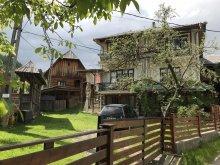 Szállás Máramaros (Maramureş) megye, Tichet de vacanță, Poienar Panzió