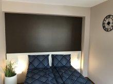 Accommodation Cernat, Wellion B&B