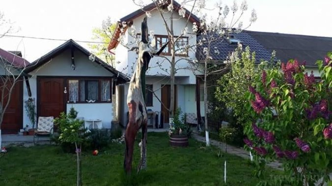 Rustic Guesthouse Vama Veche