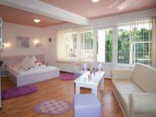 Accommodation Bran, Carina Villa