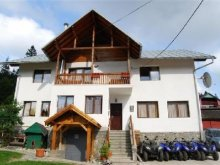 Bed & breakfast Lupueni, Vila Vitalis