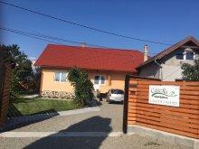 Szállás Székelyszenttamás (Tămașu), Gizella Vendégház