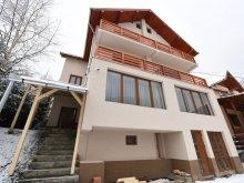 Villa Roșia, Roxmar Panzió