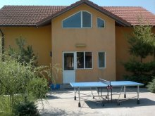 Accommodation Tulcea county, Puiu Guesthouse