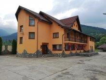 Accommodation Vama Buzăului, Alexandra Vacation home