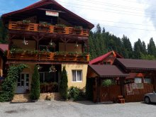 Accommodation Ghețari, Valea Brazilor B&B