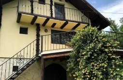 Nyaraló Izvorul Tămăduirii kolostor közelében, Cabana Breaza - SkyView Cottage