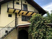 Nyaraló Produlești, Cabana Breaza - SkyView Cottage