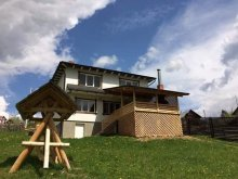 Accommodation Suceava county, Ski Călimani Chalet