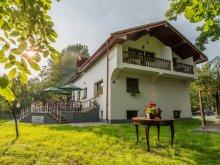 Panzió Românești, Casa din Plai Panzió