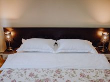 Accommodation Cugir, Mircea Apartment