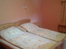 Accommodation Sub Cetate, Lukács Guesthouse