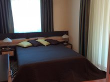 Accommodation Hajdú-Bihar county, Belvárosi Lux Apartment