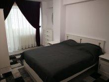 Accommodation Bălușești (Icușești), Karina Apartment