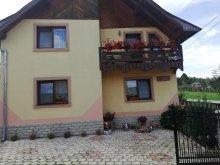 Accommodation Vârfu Dealului, Lacry Guesthouse