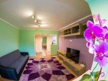 Accommodation Pianu de Sus, Ady's Home Apartment