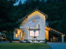 Accommodation Cârțișoara, Transylvania Chalet