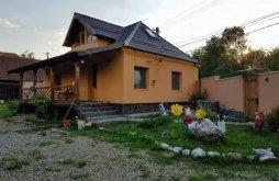 Vacation home near Densuș Church, Maria Apartment