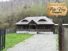 Casă de vacanță Straja (Căpușu Mare), Casa Petra Vișag - Authentic Romanian Cottage