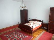 Accommodation Tiszasziget, Aranka Apartment