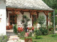 Accommodation Heves county, Napsugár Guesthouse