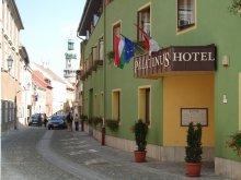 Accommodation Agyagosszergény, Palatinus Hotel