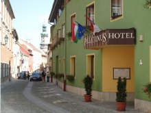 Accommodation Győr-Moson-Sopron county, Palatinus Hotel