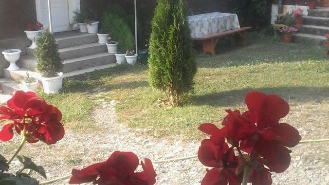 Pensiunea Dorel Petreuș Botiza