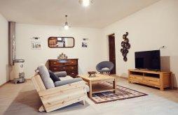 Villa Braşov county, Cozy Apartment