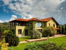 Vilă Nicolești (Frumoasa), Vila Transylvania