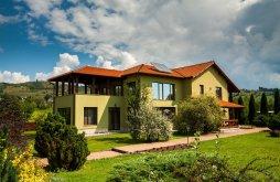 Villa Gyilkos-tó közelében, Transylvania Villa