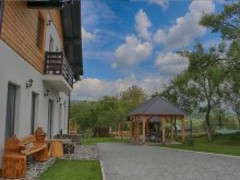 Bed & breakfast Bistrița Bârgăului Fabrici, Maramureș Landscape B&B