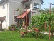 Szállás Mehedinți megye, Tichet de vacanță, La Haiduc Villa