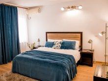 Accommodation Muntenia, THR Center Hotel