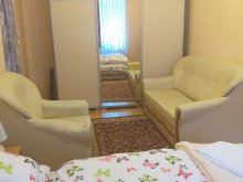 Discounted Package Rudolftelep, Marina Apartment