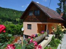 Accommodation Pintic, Laczkó Kuckó Pension