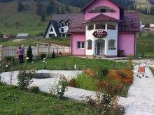 Accommodation Câmpulung Moldovenesc, Teea B&B