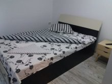Accommodation Băcâia, Barza Villa