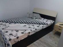 Accommodation Cugir, Barza Villa