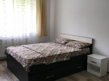Cazare Rimetea, Apartament Lotus